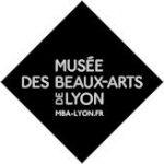 Musée des Beaux-Arts de Lyon